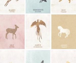 harry potter, hermione granger, and patronus image