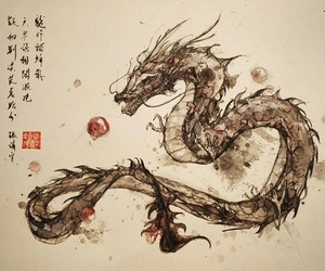 chinese and dragon image