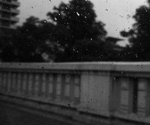 black, rain, and white image