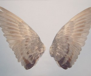 wings, angel, and aesthetic image
