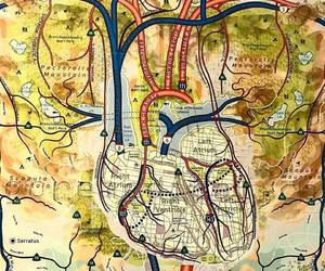 heart and medicine image