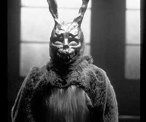 donnie darko, frank, and rabbit image