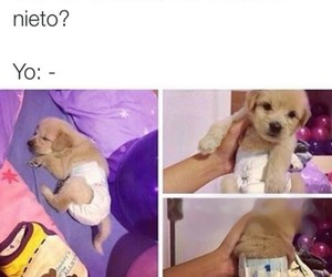 divertido, memes, and memes en español image