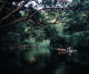 green, tropical, and dark image