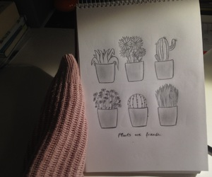 cactus, drawing, and flower image