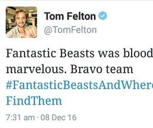 j.k rowling, tom felton, and fantastic beasts image