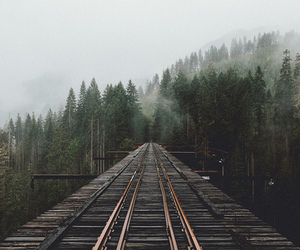 travel, nature, and tumblr image