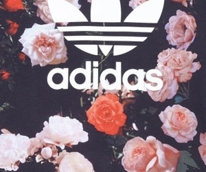 adidas and Originals image