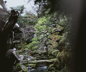 japan, nature, and stream image