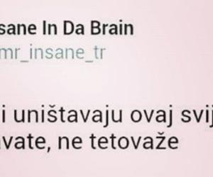 balkan, twitter, and život image