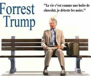 funny, french, and trump image