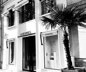 chanel, white, and shop image