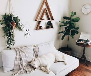 design, home, and inspo image
