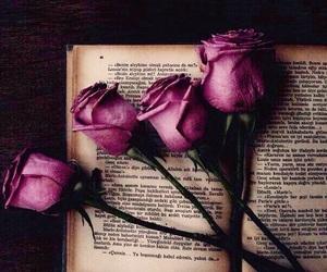 Image by Daria