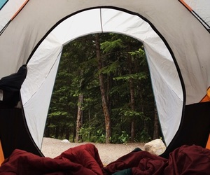 camping, forest, and rent image