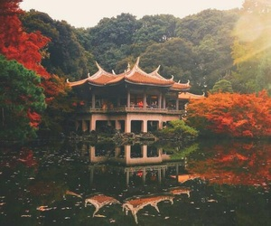 nature, japan, and water image
