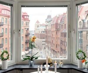theme, pink, and window image