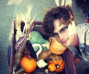 matthew gray gubler, pumpkin, and mgg image