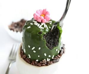 cupcakes, postre, and cactus image
