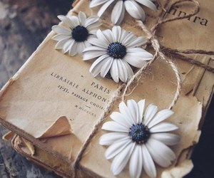 vintage, book, and decor image