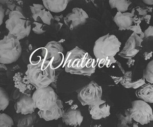 whatever, rose, and flowers image