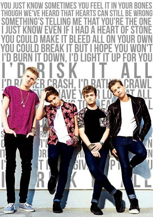 the vamps and risk it all image