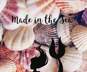 mermaid, shell, and sea image