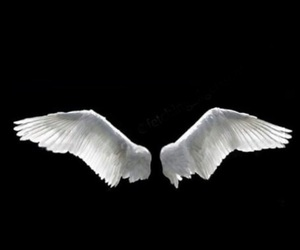 angel, edit, and fly image