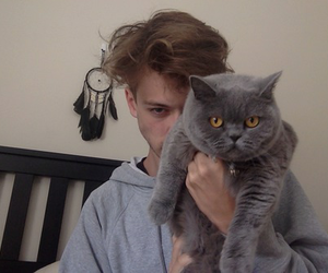 cat, boy, and grunge image