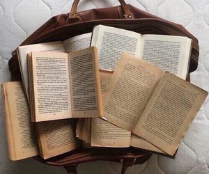 book, aesthetic, and brown image
