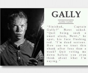 gally and the maze runner image