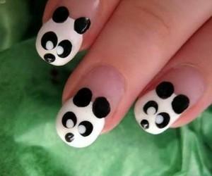 nails, panda, and nail art image