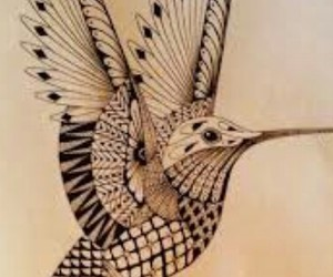 colibri, dibujos, and tatto image