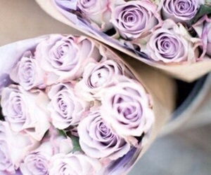 lilac, purple, and flowers image