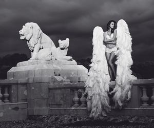alessandra ambrosio, black and white, and ángel image
