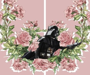darth vader and pink image