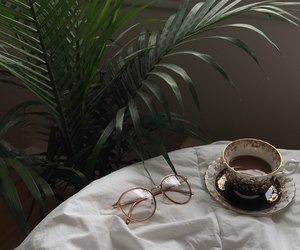 cup, glasses, and green image
