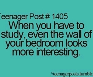 study, teenager post, and funny image