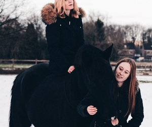goals, paard, and horse image