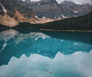 adventures, beautiful, and nature image