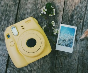 camera, polaroid, and yellow image