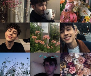 aesthetic, flowers, and moodboard image