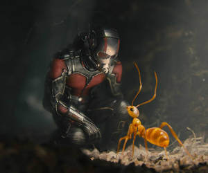 Marvel and antman image