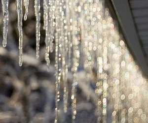 winter, ice, and christmas image