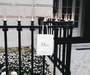 dior, Christian Dior, and fashion image