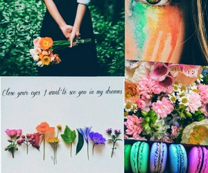 color, cute, and flowers image