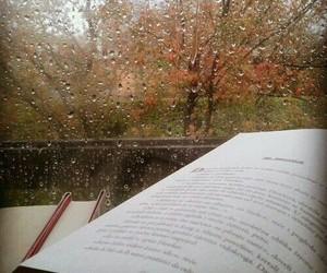 book, autumn, and rain image