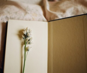 book, flower, and vintage image