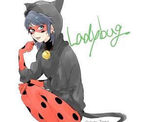 miraculous and ladybug image