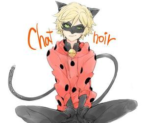 Chat Noir and miraculous image